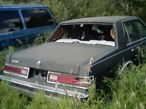 parting out 1980 dodge diplomat