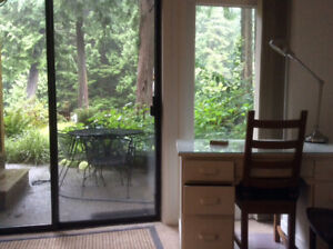 Seymour River Front Garden Suite, Oct 1/19 to March 31/20