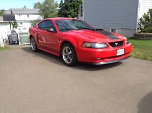 2003 Ford Mustang Mack 1 Coupe (2 door)