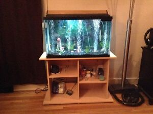 30 Gallon aquarium, complete, with many accessories