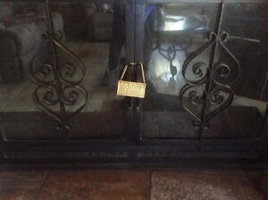 Fireplace doors with screen