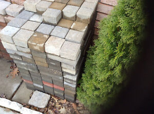 Mint About 255 luxurious patio stones