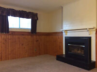 One bedroom basement suit for rent Sw