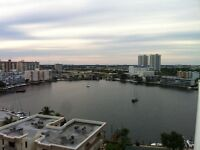 Condo for rent in Hallandale on 14th floor!