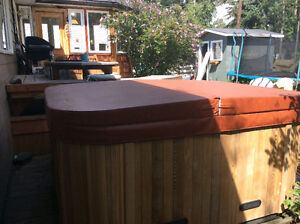 31 Jet Omega Hot Tub