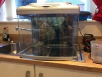 Glass cold water aquarium with silver lid