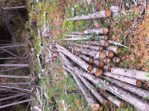"Small cedar posts, 3-4""s across small end"