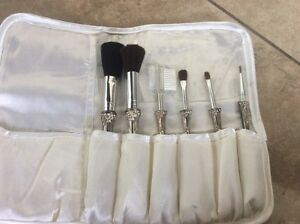 Beautiful Brand New Set of 6 Makeup Brushes
