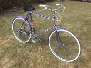 Vintage Men's Purple CCM 10 Speed