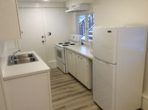 Newly renovated basement suite Lonsdale