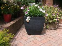 Garden pots new