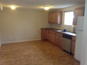 Basement suite for rent in Trochu, AB --- Utilities included!