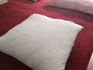 Goose feather filling cushion 2 for $20/coussin 2 pour $ 20