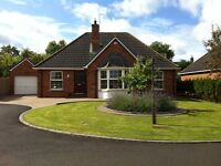 For Sale Beautiful Detached Bungalow 27 Knockantern Grove,Coleraine.