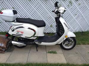 Scootterre Saga Valentino 2012