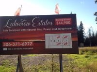 Best Priced Lots at Candle Lake with Tax Abatement, ONLY 4 Left!