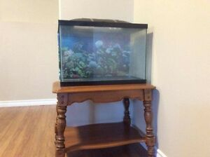Fish tank and all accesories $75.00