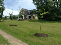 Beautiful Historic Farm For Sale