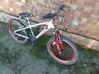 Boys cycle mountain bike