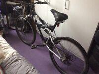 Gent bike