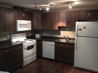2 BEDROOMS FURNISHED BASEMENT WITH SEPARATE ENTRANCE FOR RENT