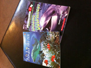 Childrens books amazing dolphins and under the sea