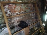 Large Victorian open plate rack
