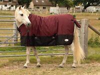 Outdoor Heavyweight Standard Neck Horse Rug