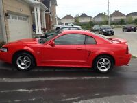 1999 Ford Mustang 35th anivessary Coupe (2 door)