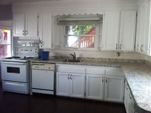 Upgraded unit, Close to downtown (New Price)