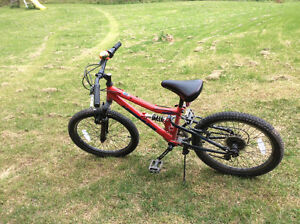 Nakamura Dropp 20 Inch Boy's Mountain Bike