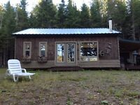 Cottage for sale on tobique river front