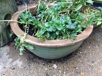 2 x Ceramic Plant Pots
