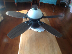 Ceiling fan, chandelier , and ceiling light