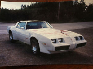 1981 Trans Am (all original)