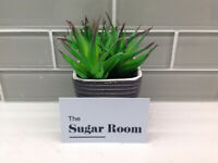 The Sugar Room
