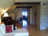 960 sq ft  New YORK STYLE 1 BEDROOM LOFT in the VILLAGE