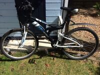 Used Raleigh Mission