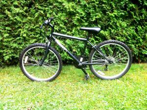 """NEXT High Peak"" Bike/ Velo /Bicyclette / Bicycle 24""  Boy"