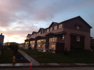 Pet friendly +WiFi+Cable Fully furnished 3B Evergreen townhouse