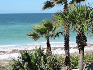 Clearwater Beach Gulf Front Condo