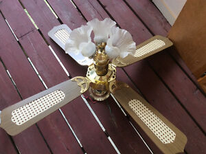 Ceiling fan with lights for sell