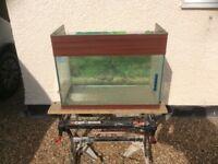 Sea bray open toped aquarium vivarium fish tank