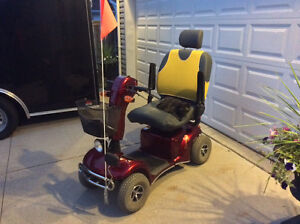 655 Rascal mobility scooter