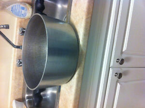 Only $5 for a large pot Kitchener / Waterloo Kitchener Area image 2