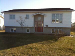 One bedroom Apartment- Grand Falls-Windsor