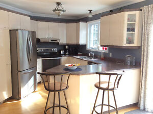Kitchen cabinets, counter top and double sink