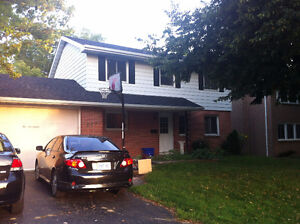 Bright, Clean, Dry Basement Apartment - available Sept 1.