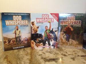 Dog whisperer dvd's