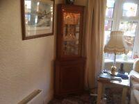 Quality Light Oak / Yew Corner Cabinet .